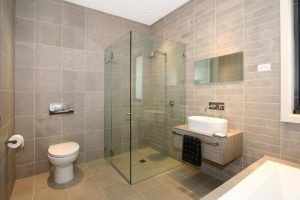 toilet_shower_basin